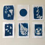 Zonneprints exposeren serie cyanotypie