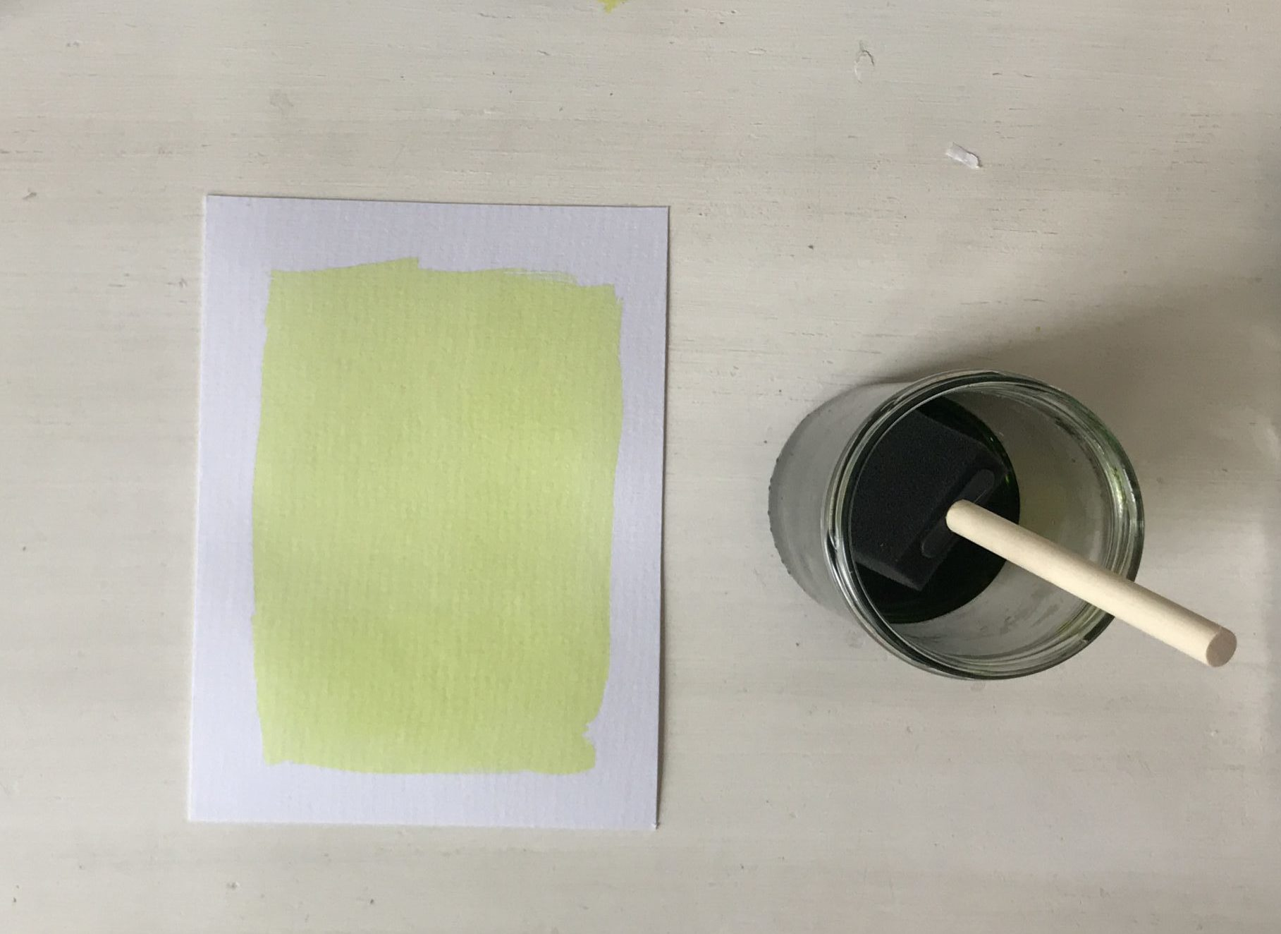 Lichtgevoelig papier zonneprint cyanotypie anna atkins