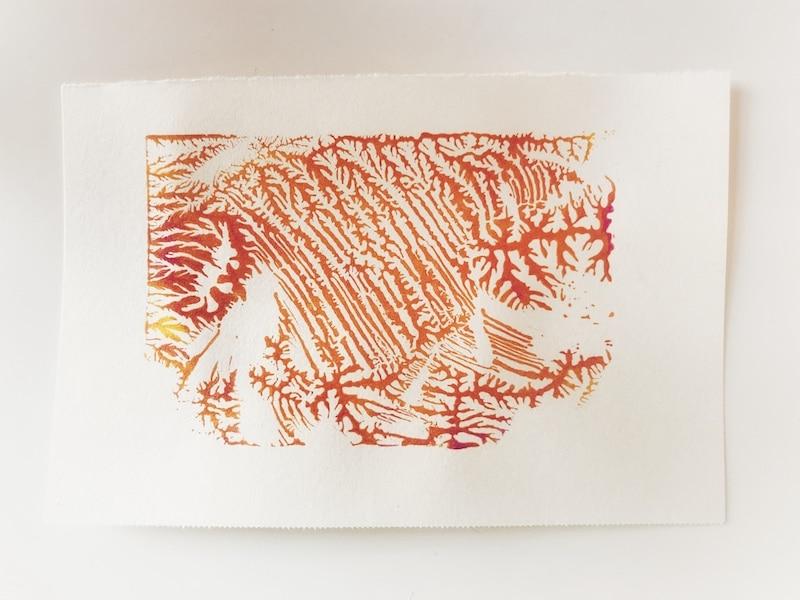 Dendritic monoprinting koraal 800x600