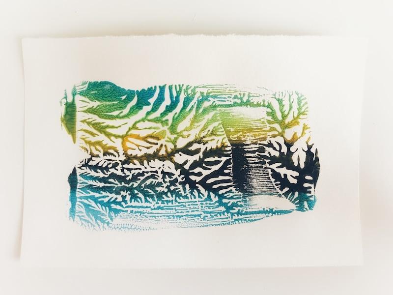 Dendritic monoprinting zeewier 800x600