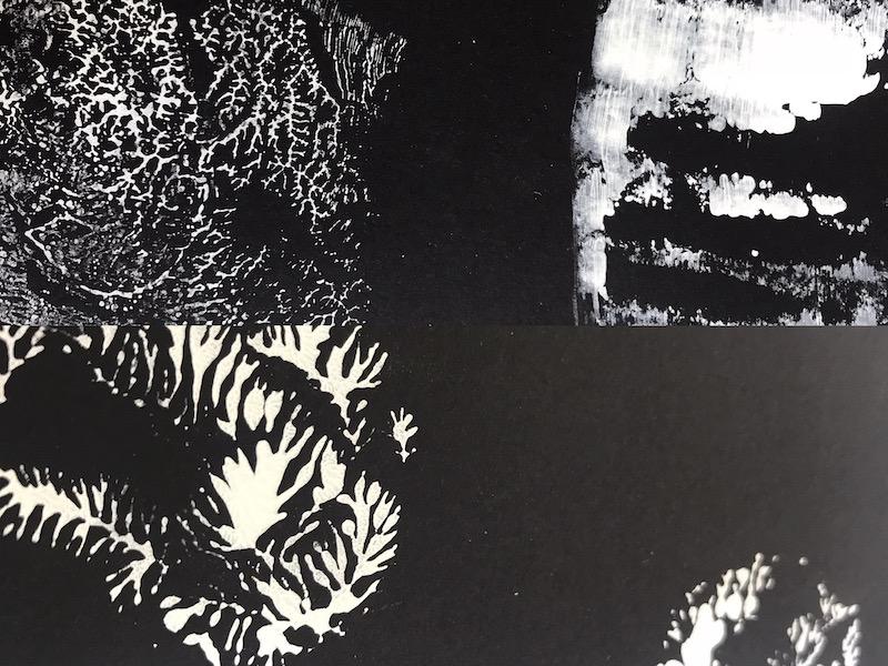 Dendritic monoprinting zwart wit 800x600